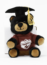 A-B TECH TEDDY BEAR GRADUATE WITH MORTAR BOARD
