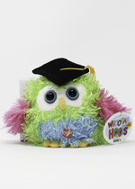 GRADUATION OWL-HOORA HOOTS-ASST. COLORS
