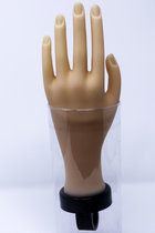 PRACTICE HAND FOR COSMETOLOGY